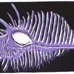 Peacock Shell Print