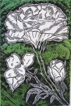 Bloom, Blossom, Bud Print