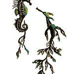 Seahorse Dance Print
